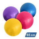 65 cm Anti-Burst Yoga Balance Ball with Pump