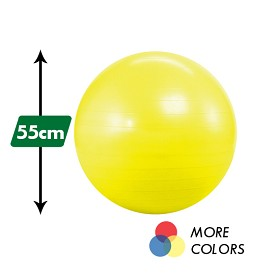 55cm Anti Burst Yoga Ball (No Pump)